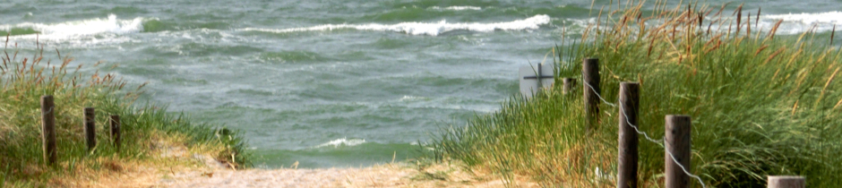 Dünenaufgang Zingst Ferienwohnung Sandstrand